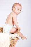 Cute little baby infant in basket with teddy Stock Photos
