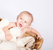 Cute little baby infant in basket with teddy Royalty Free Stock Image