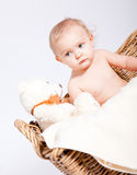 Cute little baby infant in basket with teddy Stock Image