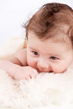 Cute little baby infant toddler on white blanket portrait Royalty Free Stock Photography