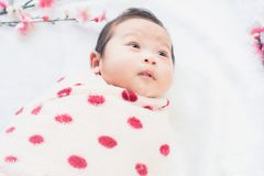 Cute little baby lies on a white cloth and wrapped in quilt, Looking around. on white background. Royalty Free Stock Images