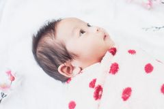 Cute little baby lies on a white cloth and wrapped in quilt, Looking around. On white background Royalty Free Stock Photo