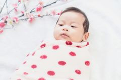 Cute little baby lies on a white cloth and wrapped in quilt, Looking around. on white background stock photo