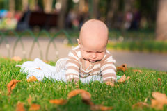 Cute little baby lying in the park Stock Image