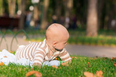 Cute little baby lying in the park Stock Photography