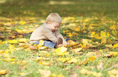 Cute little baby playing with yellow leafs in autumn park Stock Images