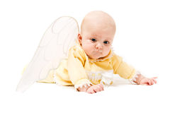 Cute little baby with wings. Happy little cute girl with wings isolated over white background Stock Photo