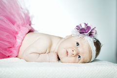 Cute little ballerina portrait Royalty Free Stock Photos