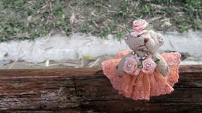Cute little bear doll in orange evening dress standing sit in wooden bench ning sit in wooden bench Royalty Free Stock Image