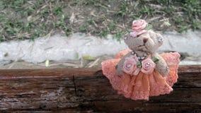 Cute little bear doll in orange evening dress standing sit in wooden bench ning sit in wooden bench Royalty Free Stock Image