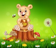 Cute little bear holding honey on tree stump Royalty Free Stock Image