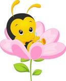 Cute little bee cartoon. Cute little bee on sunflower royalty free illustration