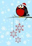 Cute little bird Stock Photos