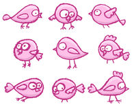 Cute little birds Royalty Free Stock Photography