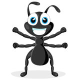 Cute little black ant Royalty Free Stock Image