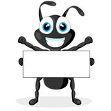 Cute little black ant with blank sign Royalty Free Stock Images