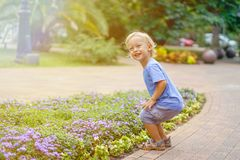 Cute little blond boy playing in the park smiling stock images