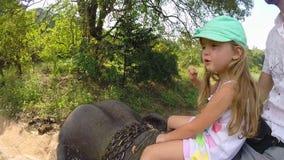 Cute little blond girl enjoying elephant safari with her father in Sri Lanka. stock video