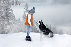 Cute little blonde girl playing in the snow with a dog Husky. Cute little blonde girl model playing in the snow with a dog Husky stock photo