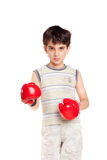 Cute little boxer Royalty Free Stock Images