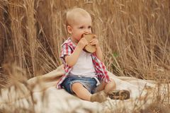Cute little boy in autumn wheat field Royalty Free Stock Photos
