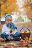 Cute little boy with basket of fruits in the park Royalty Free Stock Photography
