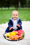 Cute little boy with a basket of ripe fruits on the nature Royalty Free Stock Image