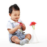 Cute little boy with beautiful flower Royalty Free Stock Photography