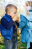 Cute little boy biting an apple Royalty Free Stock Photo