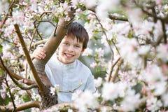 Cute little boy in blooming apple garden Royalty Free Stock Image