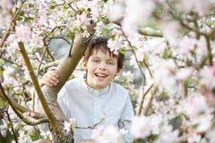 Cute little boy in blooming apple garden Stock Photos