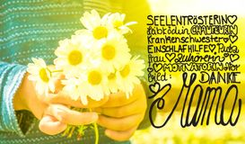 Cute Little Boy, Bouquet Daisy, Calligraphy Danke Mama Means Thank You Mom royalty free stock image