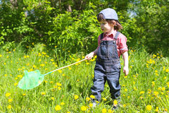 Cute little boy with butterfly net in summer outdoors Royalty Free Stock Images