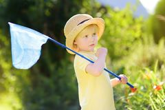 Cute little boy catches butterflies with scoop-net on sunny meadow. Young explorer of the nature. Summer activities for inquisitive child royalty free stock photo