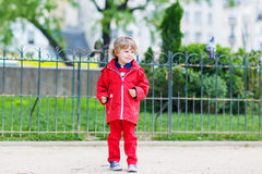 Cute little  boy catching and playing with pigeons in city Royalty Free Stock Images