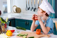 cute little boy in chef hat and apron looking away while sitting royalty free stock photography