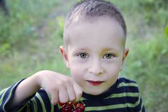 Cute little boy with cherries stock photo