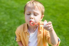 Cute little boy with closed eyes blowing soap bubbles. In park royalty free stock images