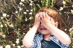 Cute little boy closes his eyes with his hands. Lying in a daisy field royalty free stock photo