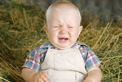 Cute Little Boy Crying stock image