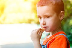 A cute little boy royalty free stock images