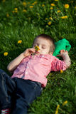 Cute little boy in a dandelion field Stock Photography