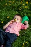 Cute little boy in a dandelion field Stock Photography