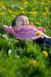 Cute little boy in a dandelion field Royalty Free Stock Images