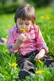 Cute little boy in a dandelion field, having fun outdoor Royalty Free Stock Photography