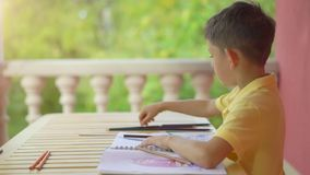 Cute little boy drawing in his album on green nature background