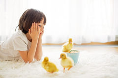 Cute little boy with duckling springtime, playing together Royalty Free Stock Photos