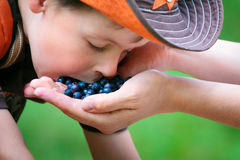 Cute little boy eating berries from mother's hand Stock Image