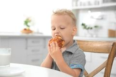Cute little boy eating big muffin Royalty Free Stock Images