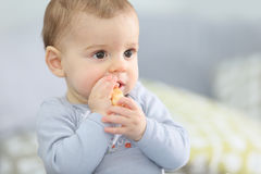 Cute little boy eating biscuit Royalty Free Stock Photography